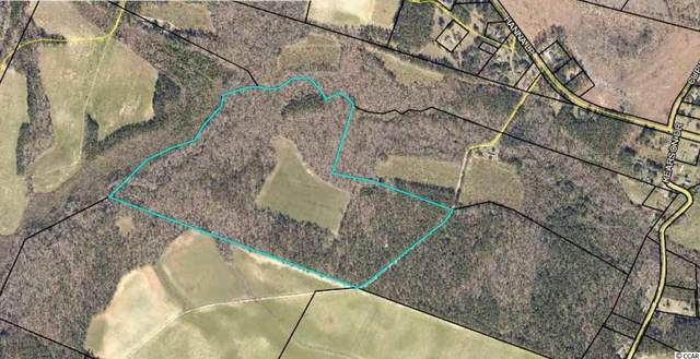 63 Acres Hanna Loop Rd., Hemingway, SC 29554 (MLS #2024370) :: Garden City Realty, Inc.