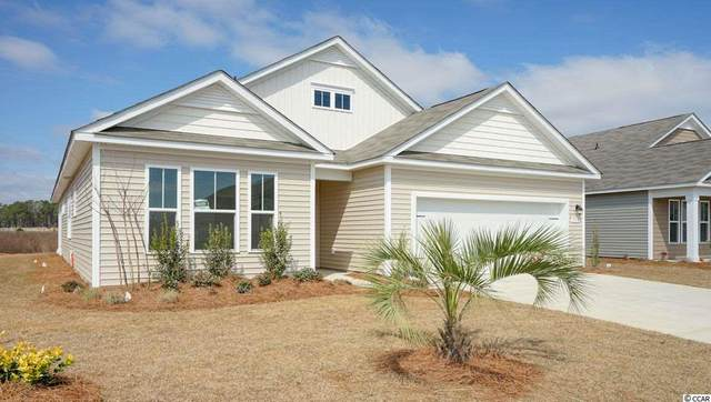 48 Grace Bay Ct., Pawleys Island, SC 29585 (MLS #2024424) :: James W. Smith Real Estate Co.