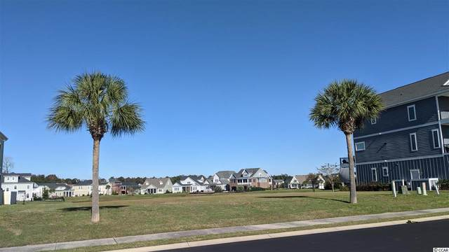 961 Crystal Water Way, Myrtle Beach, SC 29579 (MLS #2024589) :: Armand R Roux | Real Estate Buy The Coast LLC