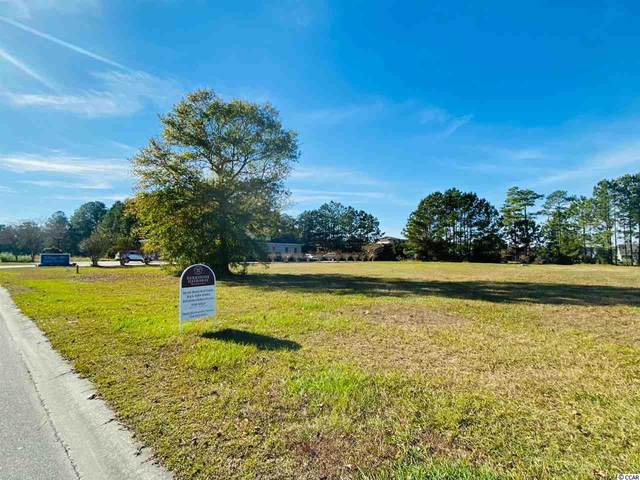 3004 Newcastle Loop, Myrtle Beach, SC 29588 (MLS #2024984) :: The Lachicotte Company