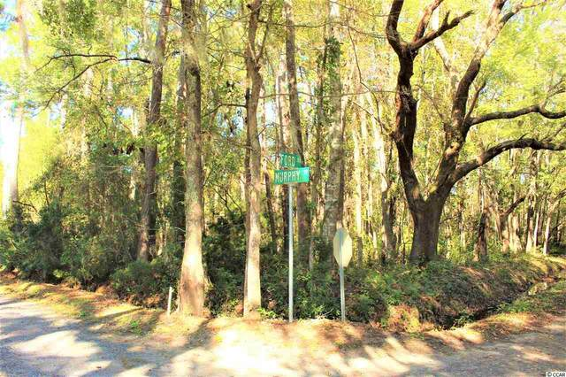 837 Ford Rd., Pawleys Island, SC 29585 (MLS #2025004) :: Armand R Roux | Real Estate Buy The Coast LLC