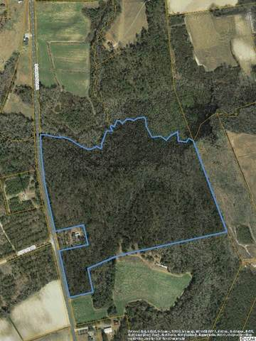N Highway 410, Aynor, SC 29511 (MLS #2025025) :: Armand R Roux | Real Estate Buy The Coast LLC