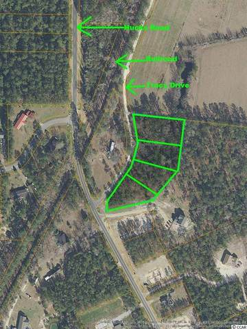 NE Trace Dr., Conway, SC 29526 (MLS #2025049) :: Duncan Group Properties