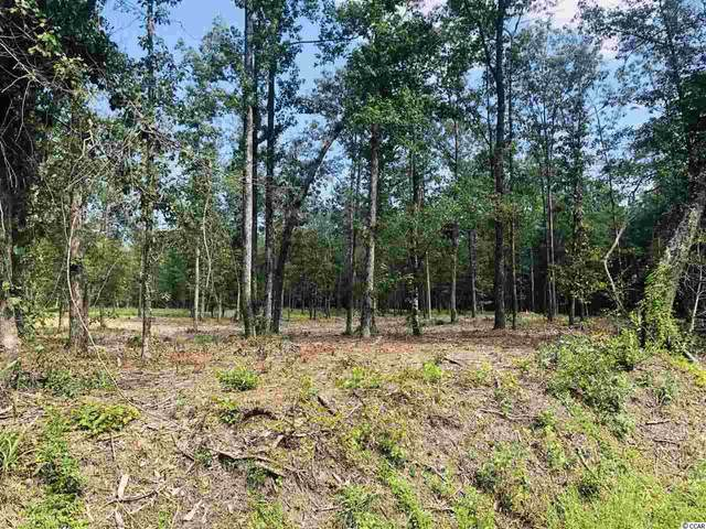 TBD Tract B Highway 19, Loris, SC 29569 (MLS #2025099) :: James W. Smith Real Estate Co.