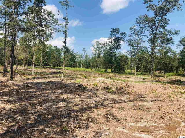 Tract A Highway 19, Loris, SC 29569 (MLS #2025101) :: James W. Smith Real Estate Co.