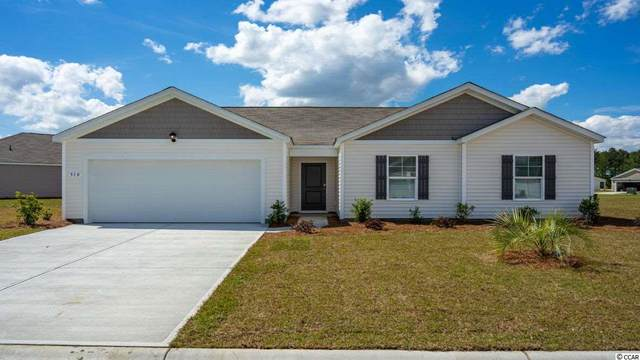 160 Captiva Cove Loop, Pawleys Island, SC 29585 (MLS #2025144) :: Welcome Home Realty