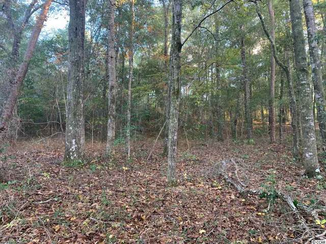 Lot 14 Mohican Dr., Georgetown, SC 29440 (MLS #2025184) :: Duncan Group Properties