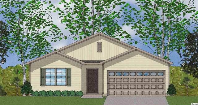 TBB St. Albans Loop, Conway, SC 29526 (MLS #2025325) :: Right Find Homes