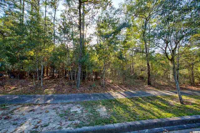 63 Madison Dr., Georgetown, SC 29440 (MLS #2025419) :: James W. Smith Real Estate Co.