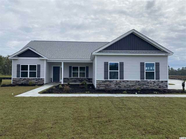 144 Barons Bluff Dr., Conway, SC 29526 (MLS #2025584) :: The Litchfield Company