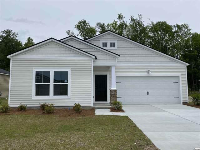 258 S Reindeer Rd., Surfside Beach, SC 29575 (MLS #2026050) :: Jerry Pinkas Real Estate Experts, Inc