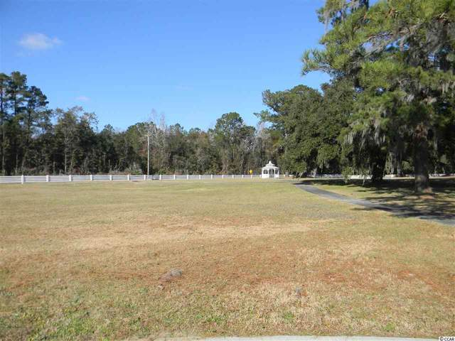 Lot 18 Daisy Bank Circle, Georgetown, SC 29440 (MLS #2026415) :: Sloan Realty Group