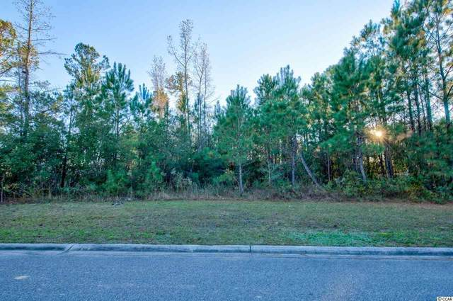 570 Timber Creek Dr., Loris, SC 29569 (MLS #2026434) :: Welcome Home Realty