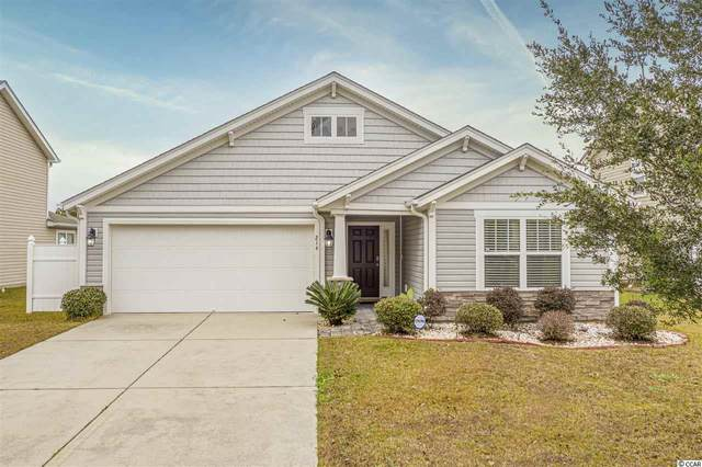 214 Sea Turtle Dr., Myrtle Beach, SC 29588 (MLS #2026455) :: The Lachicotte Company