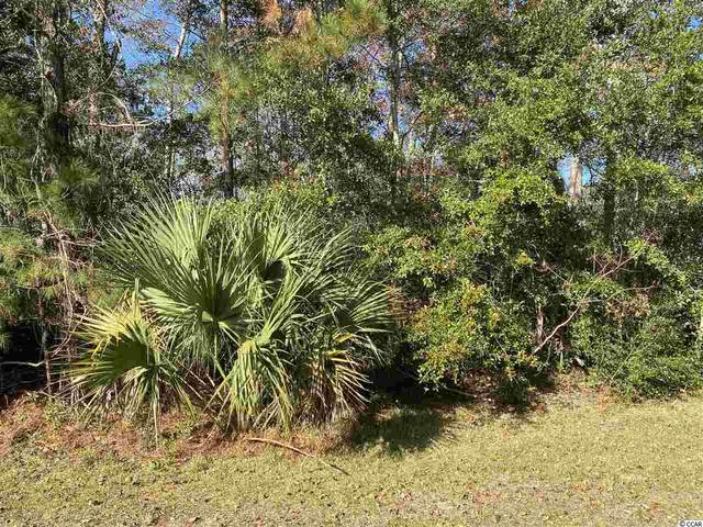 257 Trace Dr., Pawleys Island, SC 29585 (MLS #2026484) :: Right Find Homes