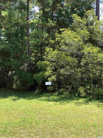 Lot 27 Low Country Loop, Murrells Inlet, SC 29576 (MLS #2100140) :: Right Find Homes