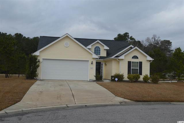 247 Hickory Springs Ct., Conway, SC 29527 (MLS #2100473) :: Hawkeye Realty