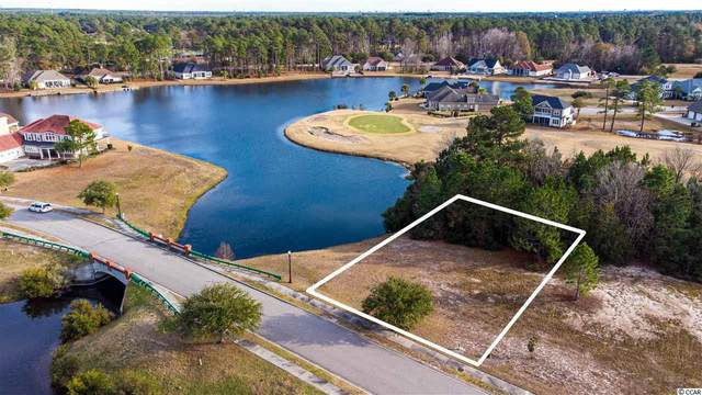 1244 Wood Stork Dr., Conway, SC 29526 (MLS #2100503) :: The Litchfield Company