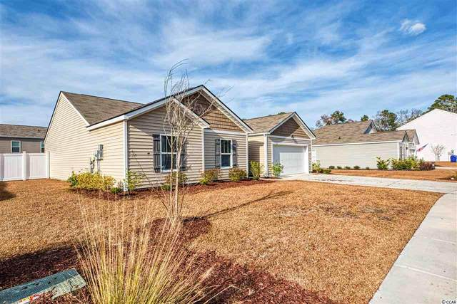 1317 Blackwood Dr., Conway, SC 29527 (MLS #2100587) :: The Litchfield Company