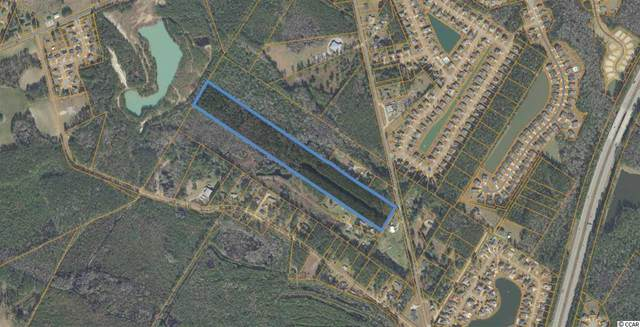 17.1 Acres Mount Zion Rd., Little River, SC 29566 (MLS #2100703) :: Sloan Realty Group