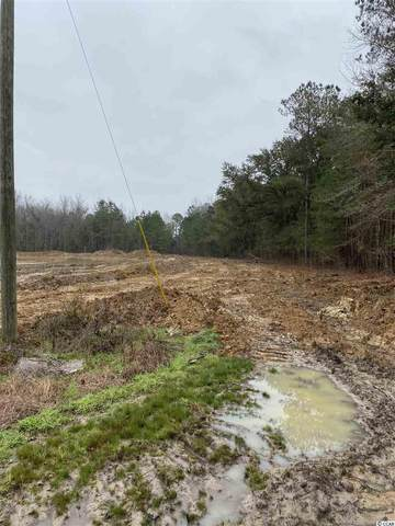 0 Coleman Ave., Greeleyville, SC 29056 (MLS #2101077) :: The Litchfield Company