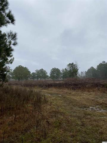 tbd 10th Ave. S, Greeleyville, SC 29056 (MLS #2101079) :: The Hoffman Group