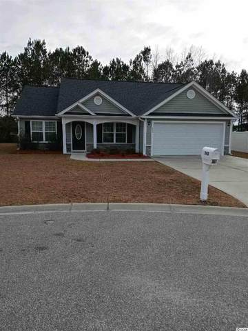 242 Blue Jacket Dr., Aynor, SC 29544 (MLS #2101166) :: The Litchfield Company