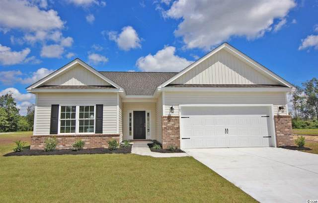 105 Palm Terrace Loop, Conway, SC 29526 (MLS #2101177) :: Armand R Roux | Real Estate Buy The Coast LLC