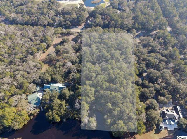 Lot 3A Wallace Pate Dr., Georgetown, SC 29440 (MLS #2101298) :: The Lachicotte Company