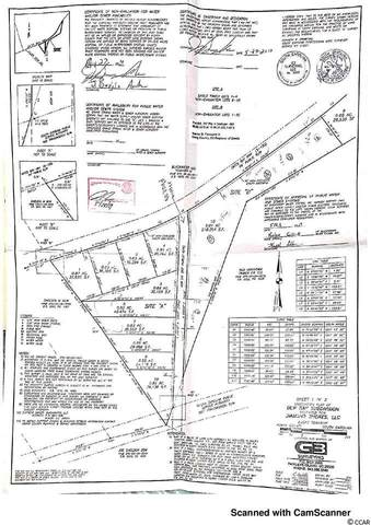 Lot 10A Dew Lane, Conway, SC 29527 (MLS #2101325) :: The Lachicotte Company
