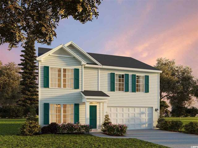 296 Hampton Park Circle, Myrtle Beach, SC 29588 (MLS #2101484) :: The Lachicotte Company