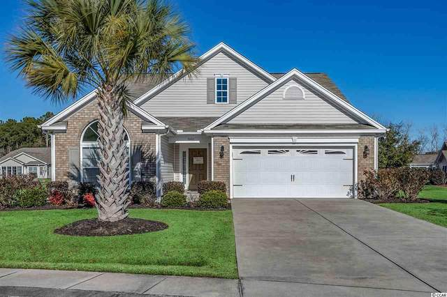 3990 Tiger Paw Ln., Myrtle Beach, SC 29588 (MLS #2101524) :: Jerry Pinkas Real Estate Experts, Inc