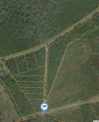 Lot 10B Dew Lane, Conway, SC 29527 (MLS #2101582) :: The Litchfield Company