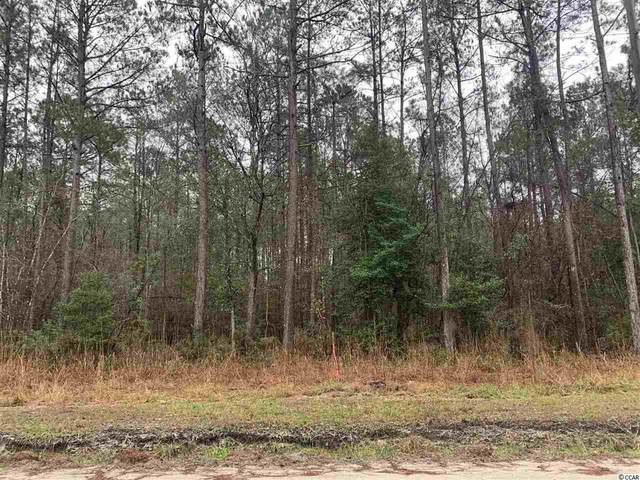 Lot 2 and 3 W Cay Rd., Loris, SC 29569 (MLS #2101763) :: Hawkeye Realty