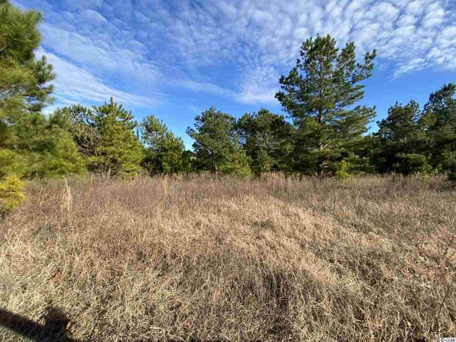 TBD Adrian Hwy., Conway, SC 29526 (MLS #2101764) :: Grand Strand Homes & Land Realty