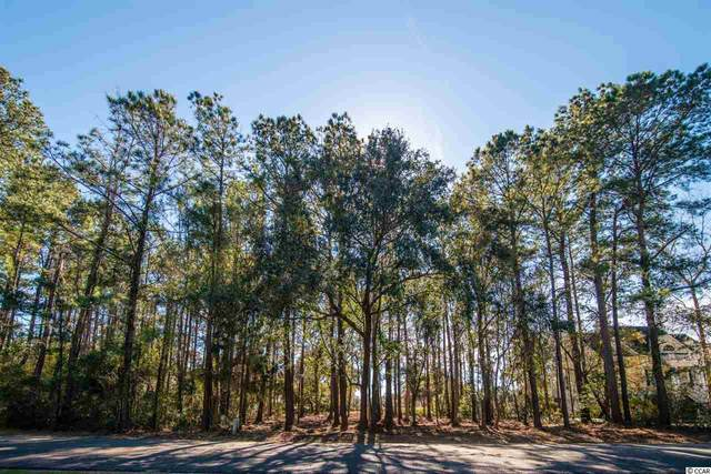 73 Wallace Pate Dr., Georgetown, SC 29440 (MLS #2101985) :: Grand Strand Homes & Land Realty