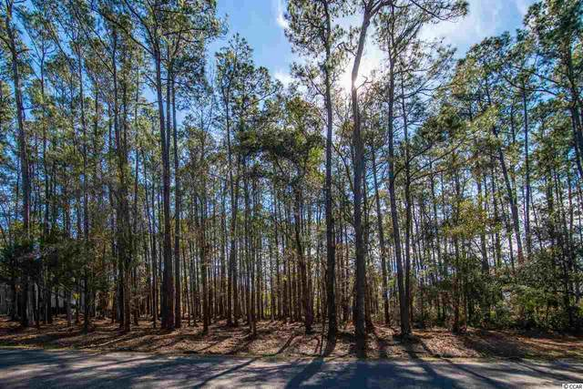 Wallace Pate Dr., Georgetown, SC 29440 (MLS #2101987) :: Grand Strand Homes & Land Realty