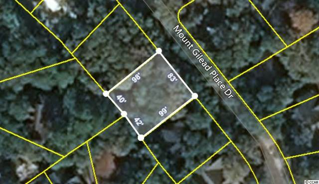781 Mount Gilead Place Dr., Murrells Inlet, SC 29576 (MLS #2102125) :: The Litchfield Company