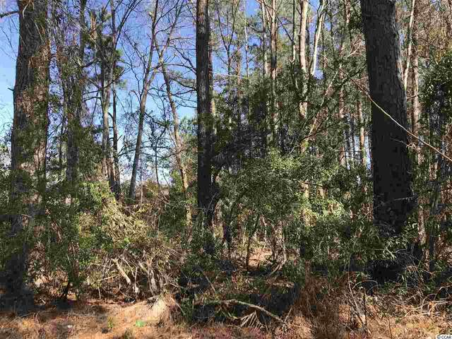 TBD Pee Dee Hwy., Conway, SC 29527 (MLS #2102435) :: The Litchfield Company