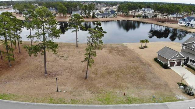 756 Waterbridge Blvd., Myrtle Beach, SC 29579 (MLS #2102641) :: Grand Strand Homes & Land Realty