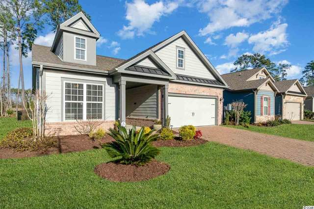 1869 Francis Ct., Myrtle Beach, SC 29577 (MLS #2103009) :: The Litchfield Company
