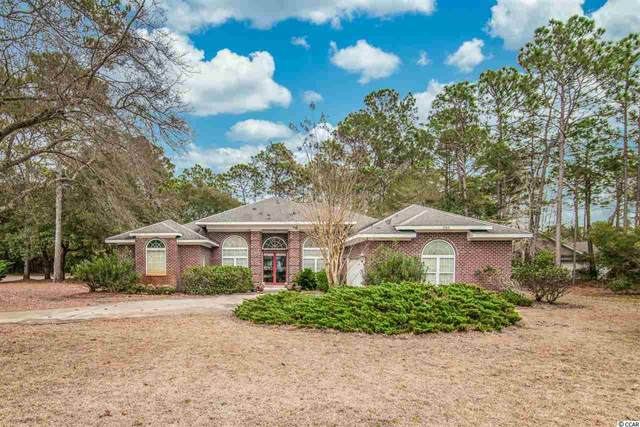 286 Red Tail Hawk Loop, Pawleys Island, SC 29585 (MLS #2103265) :: The Hoffman Group