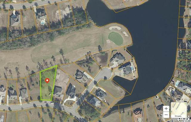 1325 Whooping Crane Dr., Conway, SC 29526 (MLS #2103354) :: Jerry Pinkas Real Estate Experts, Inc
