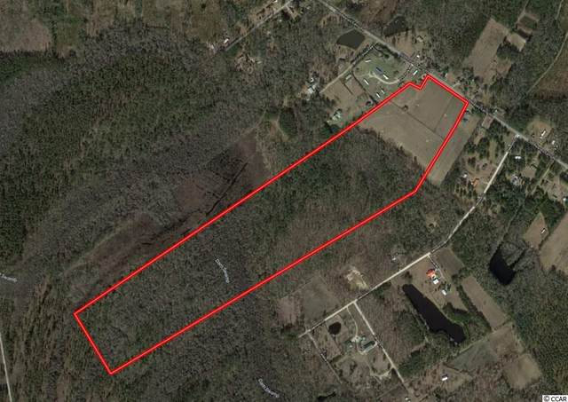 3617 Old Reaves Ferry Rd., Conway, SC 29526 (MLS #2103364) :: The Litchfield Company