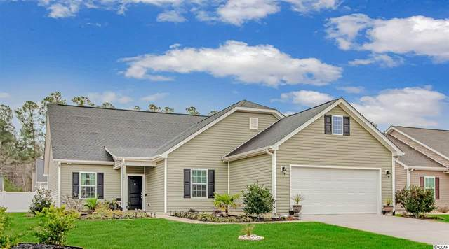 541 Tourmaline Dr., Little River, SC 29566 (MLS #2103424) :: Armand R Roux | Real Estate Buy The Coast LLC