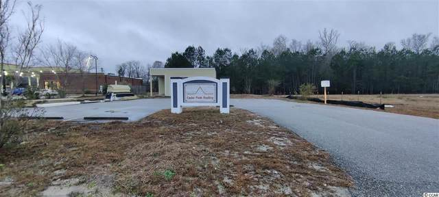 1009 Boundary St., Conway, SC 29526 (MLS #2103714) :: Jerry Pinkas Real Estate Experts, Inc