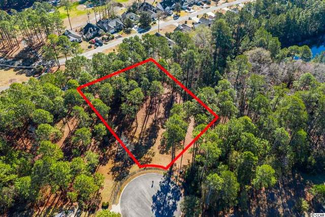 1001 Wigeon Dr., Conway, SC 29526 (MLS #2104193) :: Leonard, Call at Kingston
