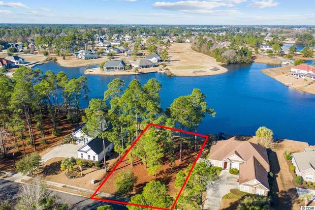1443 Whooping Crane Dr., Conway, SC 29526 (MLS #2104251) :: Team Amanda & Co