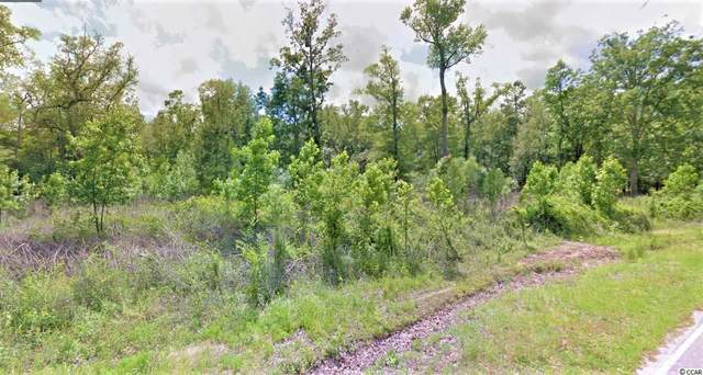 Lot 47 Rowe Pond Rd., Conway, SC 29526 (MLS #2104282) :: The Litchfield Company
