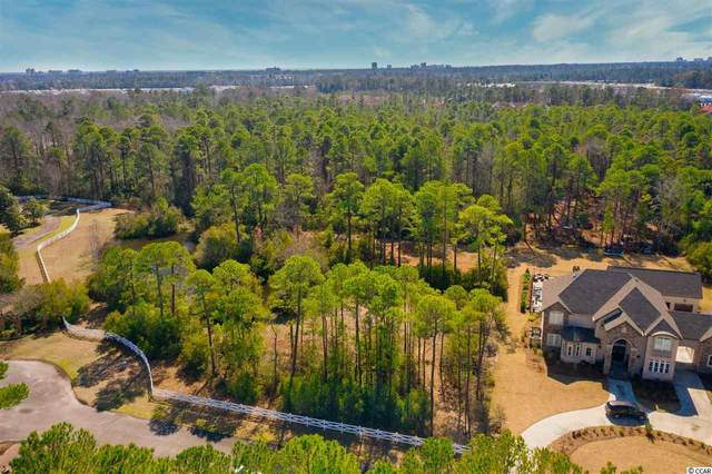 3042 Holly Berry Ct., Myrtle Beach, SC 29579 (MLS #2104304) :: The Lachicotte Company